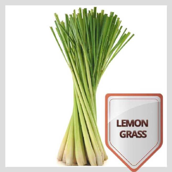 Lemon Grass Dry Leaves - 1kg