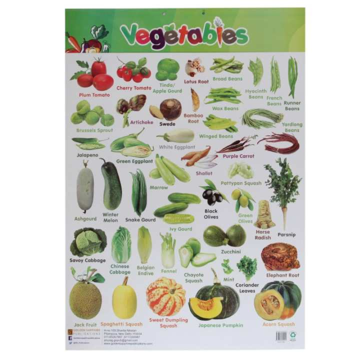 Vegetables Educational Wall Chart Poster